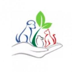 Clinique Vétérinaire des Ecoles