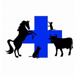 Cabinet vétérinaire de la sablière