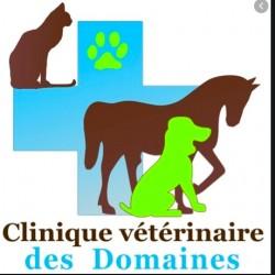 Clinique Vétérinaire Des Domaines
