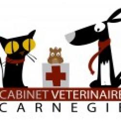 Cabinet Vétérinaire Carnegie