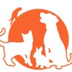 Clinique Vétérinaire de la Boulais