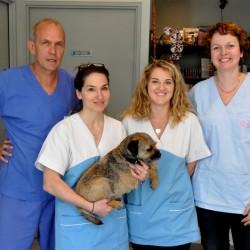 Clinique Vétérinaire du Dr MIALLON
