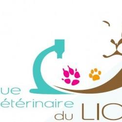 Clinique Vétérinaire du Lion