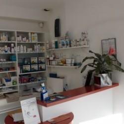 Cabinet Vétérinaire Du Dr Descarsin