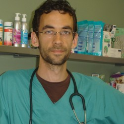 Dr. Stéphane Berckmans