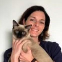 Dr. Aude Bressolin