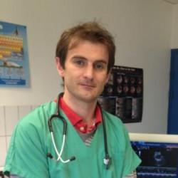 Dr François Baron