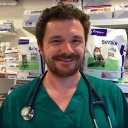 Dr Lucas Sanier
