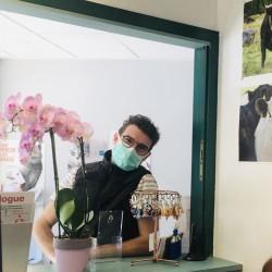 Dr Vétérinaire Remplaçant