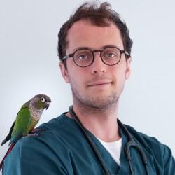 Dr Pierre-Yves Rinaudo