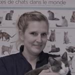 Dr. Amélie Feher